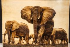 elephants-wood-burning