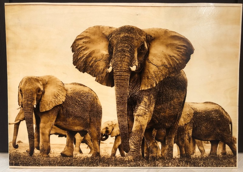 elephants-wood-burning