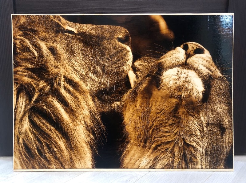 lions-pyrography