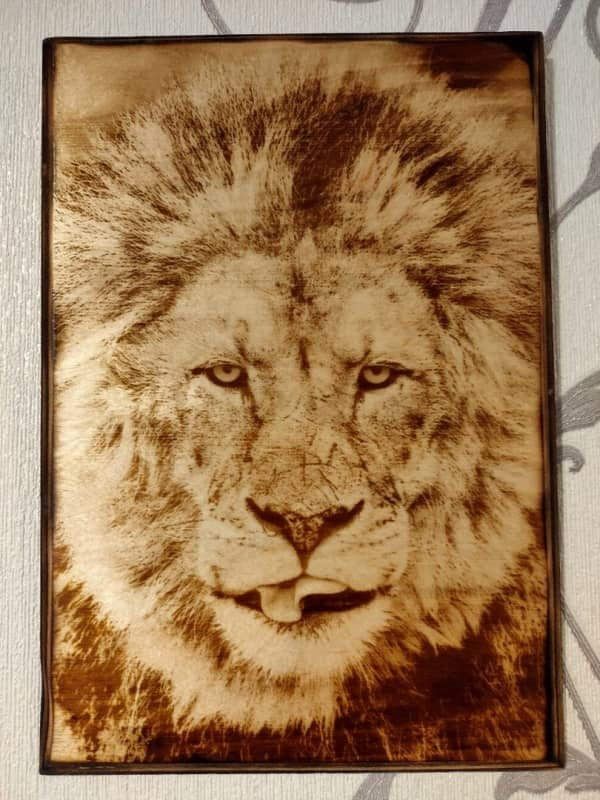 wood-burned-picture-lion